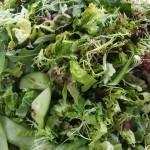 Homemade Green Leaf Salad
